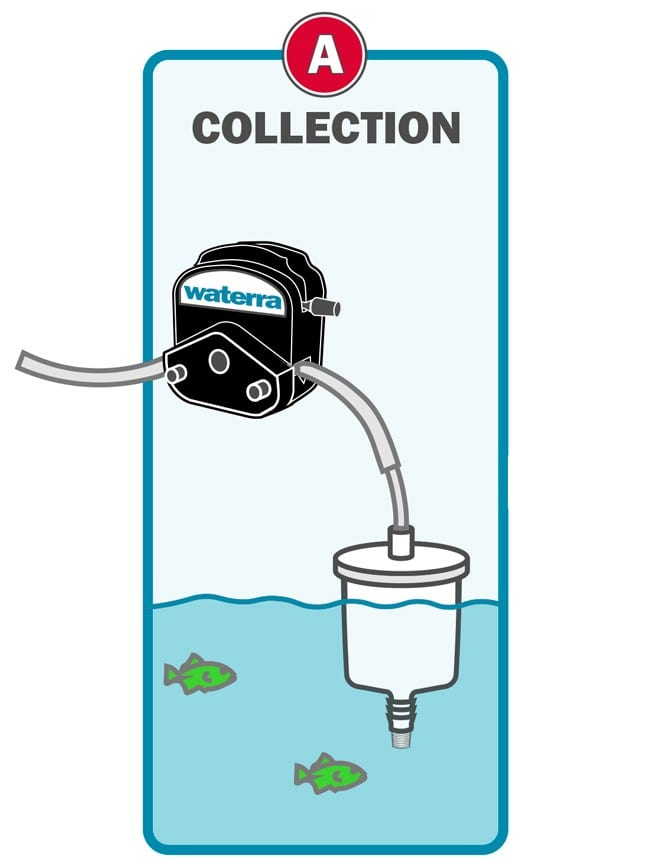 Waterra eDNA Filter - Sample Collection