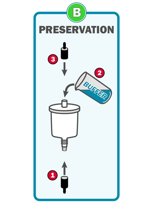 Waterra eDNA Filter - eDNA Preservation