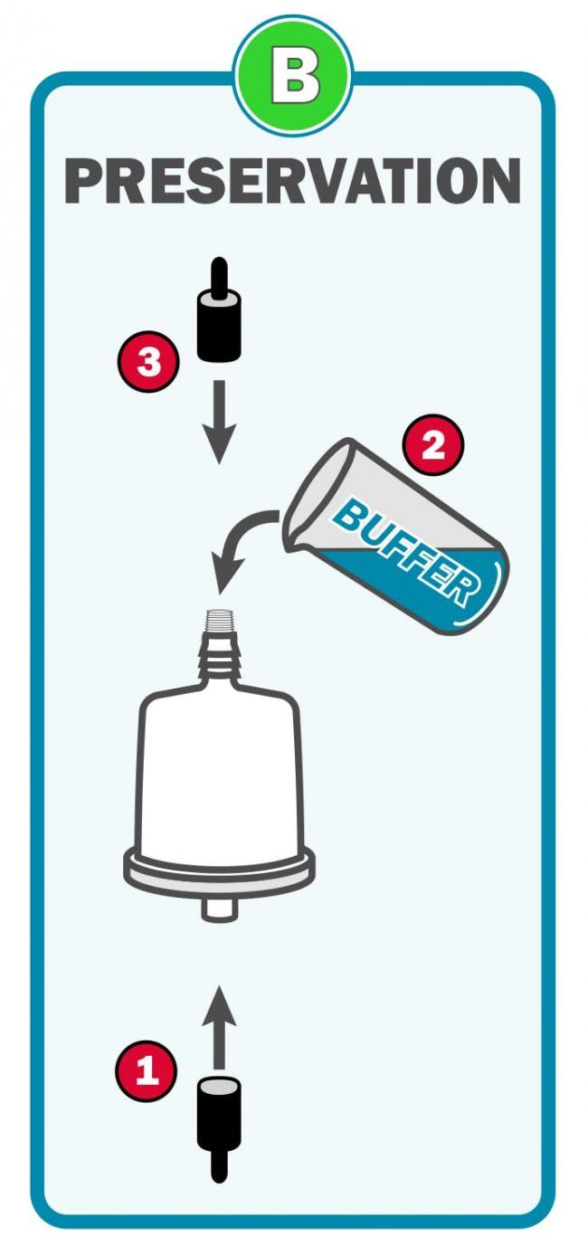 eDNA filter showing reverse Buffer fill